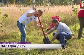 На территории СЭЗ «Могилев» высадили около 4000 деревьев
