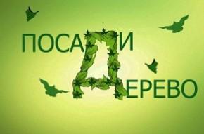 Акция «День озеленения» набирает обороты по всей стране