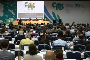Белорусская делегация принимает участие в 70-ом заседании Постоянного комитета Конвенции о международной торговле видами дикой фауны и флоры, находящимися под угрозой исчезновения (СИТЕС)