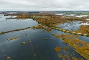 Беларусь предотвратит выбросы в атмосферу более 5 млн тонн CO2 благодаря восстановлению болот