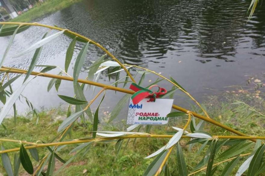Более тысячи деревьев посадили в День народного единства в Витебской области