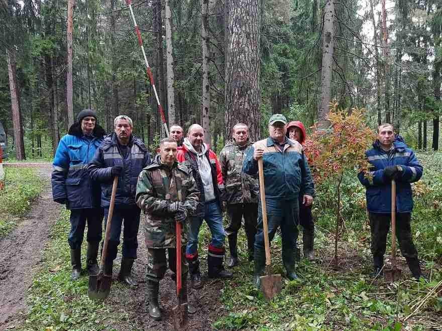 Высадка саженцев в Печорском лесопарке г.Могилева