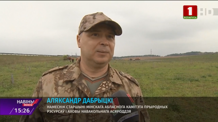 Почти две тысячи деревьев и кустарников высадили в эти выходные в Минской области