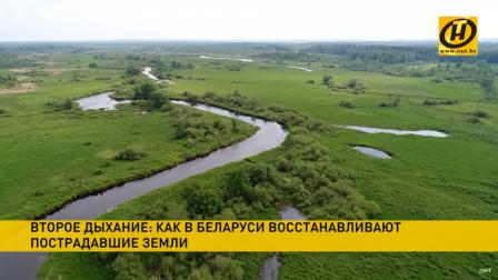 Что делают в Беларуси для сохранения экосистем и возвращения земель в оборот?