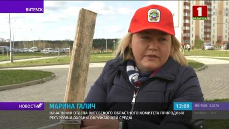 """В Витебске посадили более сотни деревьев во время экологической кампании """"Обустроим малую родину"""""""
