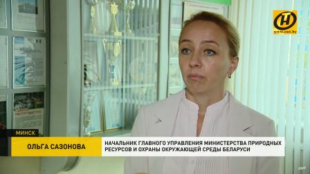 Ввести запрет на пластиковую посуду в общепите: такое предложение считают правильным белорусские экологи