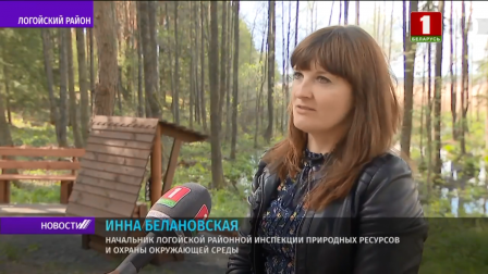 Благоустройство родников проводят в Беларуси